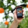Zoo Boo & iPhone App
