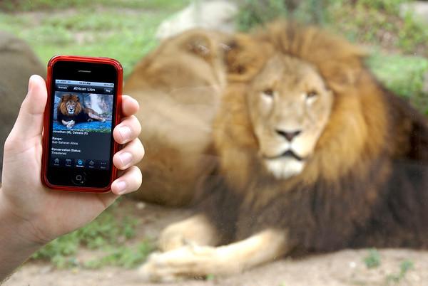 Houston Zoo iPhone app