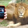 Jonathan & iPhone App