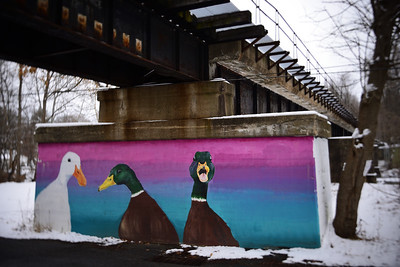 Ducks Under the Train Track–––Belvidere, NJ