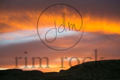 Jill D Miller-2316 copy
