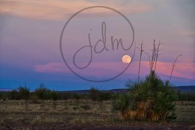 _JDM4991~strawberry moon2