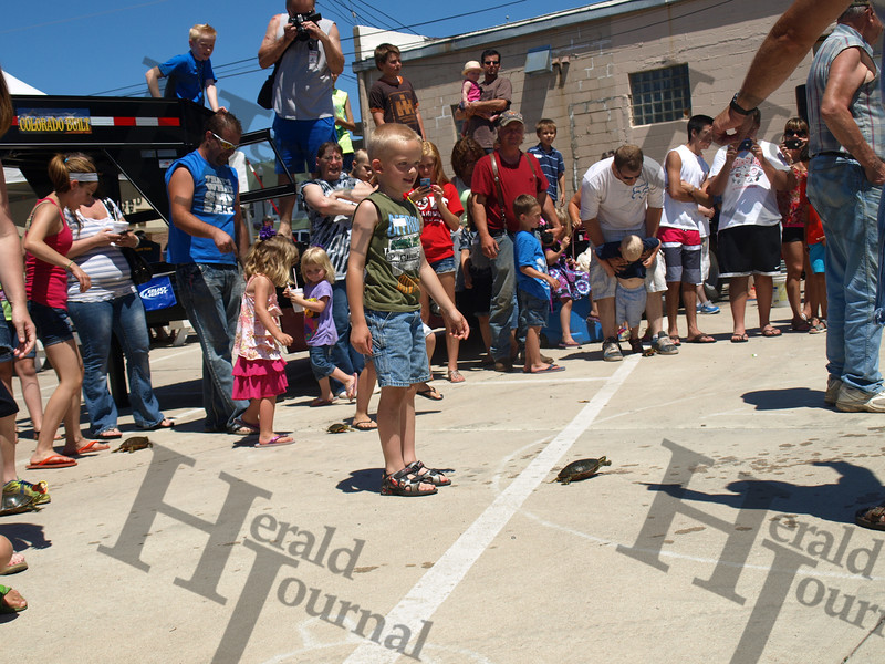 GND turtle races