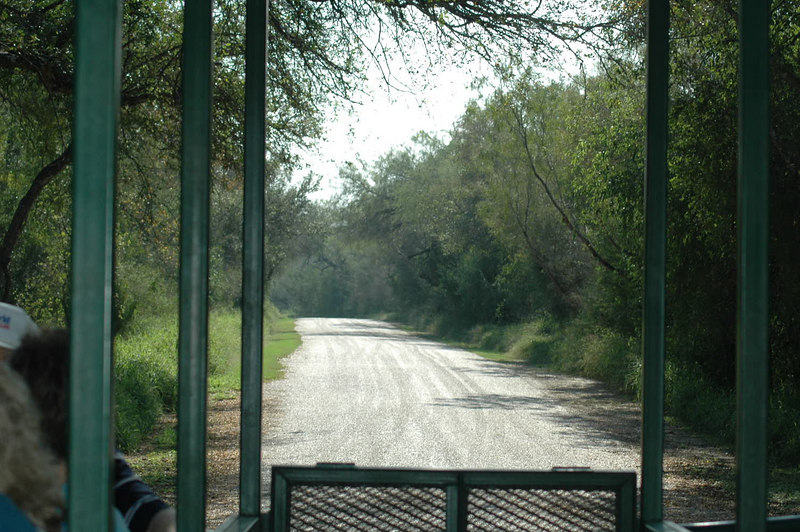 View from the tram shuttle.  Cars are not allowed to drive through, so to explore the park you have to walk, bike, or have the tram drop you off at various spots.