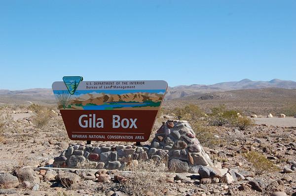 Journal Site 111:  Gila Box Riparian National Conservation Area, Safford, AZ - November 20, 2008