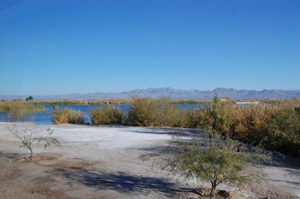 Journal Site 111:  Roper Lake State Park, Safford, AZ - November 15, 2008