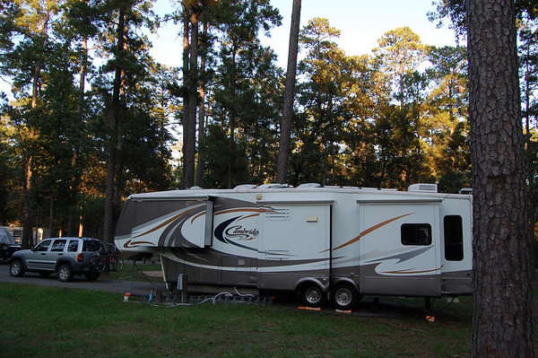 Journal Site 136: Cagle Recreation Area, Sam Houston National Forest, New Waverly, TX - Oct. 18, 2009