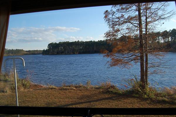 Journal Site 171: Laura S. Walker State Park, Waycross, GA - Dec. 12, 2010