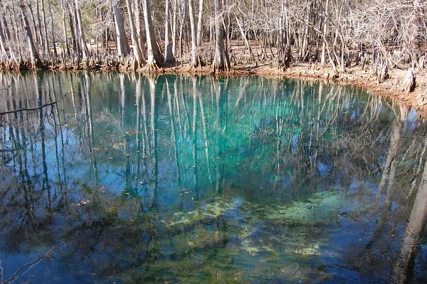 Journal Site 173: Manatee Springs State Park, Chiefland, FL - Dec. 30, 2010