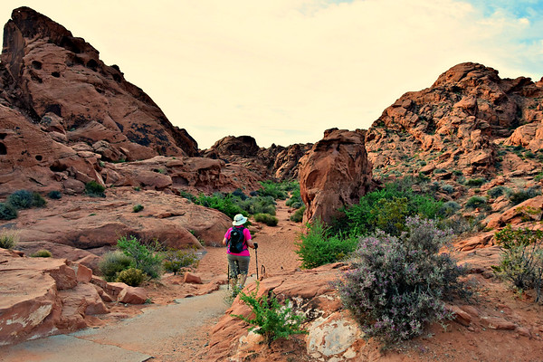 Valley Of Fire - Mouse Tanks Trail