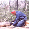 Building the Roaring Fork shelter on the Appalachian Trail.