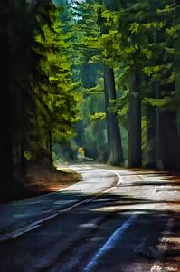 Redwood_HDR_Sim