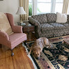 The Howarth House Bed and Breakfast in Fitchburg turned 10 Oct, 1, 2019 and on Friday, Oct. 18, 2019 Brian And Linda Belliveau sat down to talk about their business. A view of the living room at the B & B. SENTINEL & ENTERPRISE/JOHN LOVE