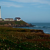 Pacific Coast Highway Cabrillo, CA Lighthouse