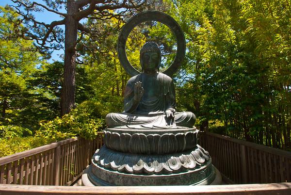 Tea Garden Meditation