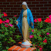 Basilica Shrine of St Mary, Wilmington, NC, adjoined to the Basilica is a Catholic school with a beautiful statue of St Mary our front surrounded by roses