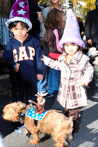 HALLOWEEN DOG PARADE 2009-82