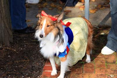 HALLOWEEN DOG PARADE 2009-78
