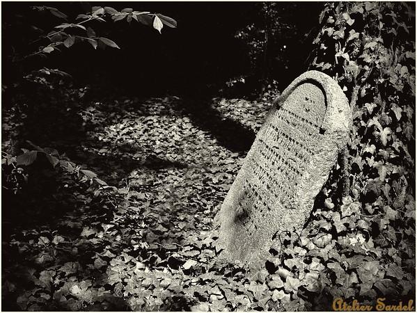 Hřbitovy & Krucifixy