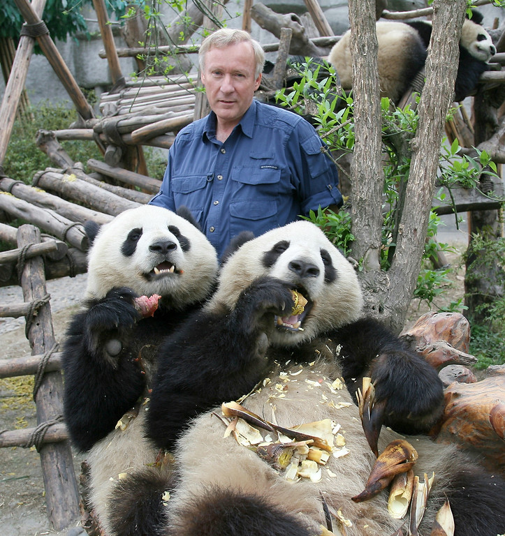 Enjoying the rare privilege of spending lunch with friends at a Giant Panda research center outside Chengdu in western China.  The Pandas here are much larger than the few found in zoos in other countries.