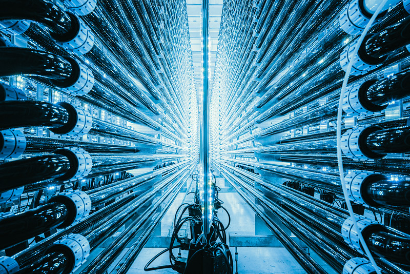 A photobioreactor at Algalif facilities in  Reykjanesbaer, Iceland. Algalif plant produces sustainable astaxanthin from micro-algae using 100% clean geothermal energy. In the Starvation Phase, the algae culture is exposed to UV light to cause stress conditions and induce astaxanthin synthesis. The proprietary lighting system enables Algalif to reduce overall energy consumption by 50%, in addition to providing for optimal microalgae growth, productivity and yield. The production methods allow for 0% water evaporation, while some manufacturers lose up to 20% of water per day. Algalif doesn't have to cool, heat, or move water during our production process, allowing us to conserve water.