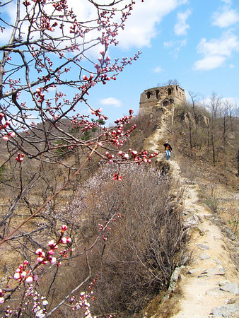 【spring】Huanghuacheng  Zhuangdaokou Great Wall hike