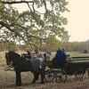 Hubertus Hunting 2012; Hubertus Jagt 2012;