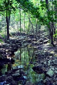 Creek at the Base