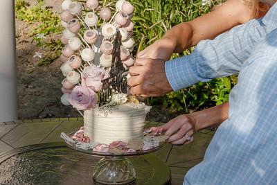 Cake cutting-6981-4424