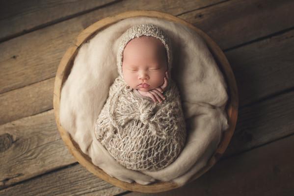 hudson newborn