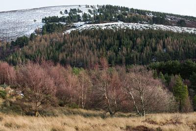 Cromdale Hills walk