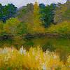 131011-004-6x8 Quiet marsh SOLD