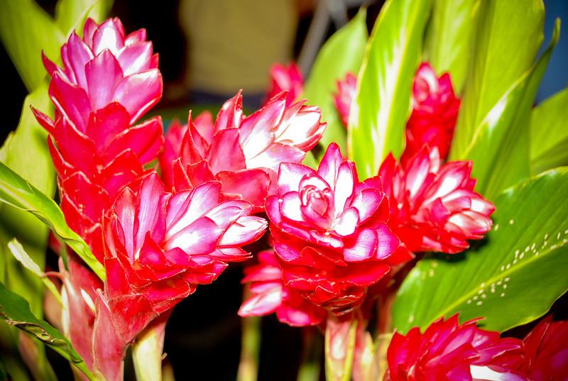 Hukilau_2011_Thursday_Bazaar-160