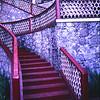 Stairway at Angangueo