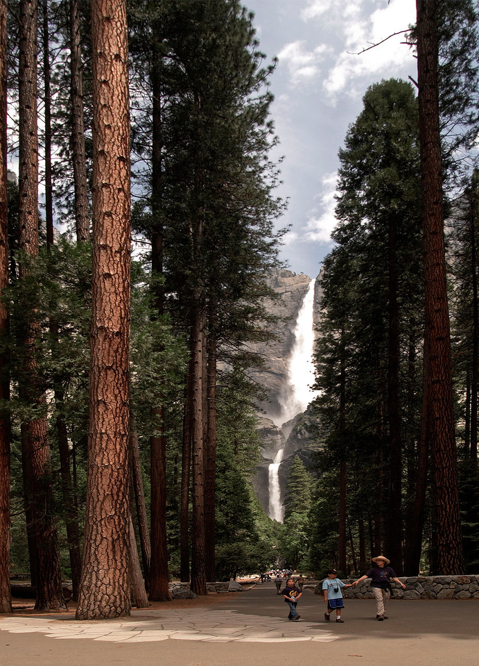 Upper and Lower Yosemite Falls. Total height 2,425 feet.  The trees aren't too shabby either, they can be 300 feet tall.