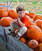Child with pumpkins