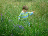 Boy in tall grass
