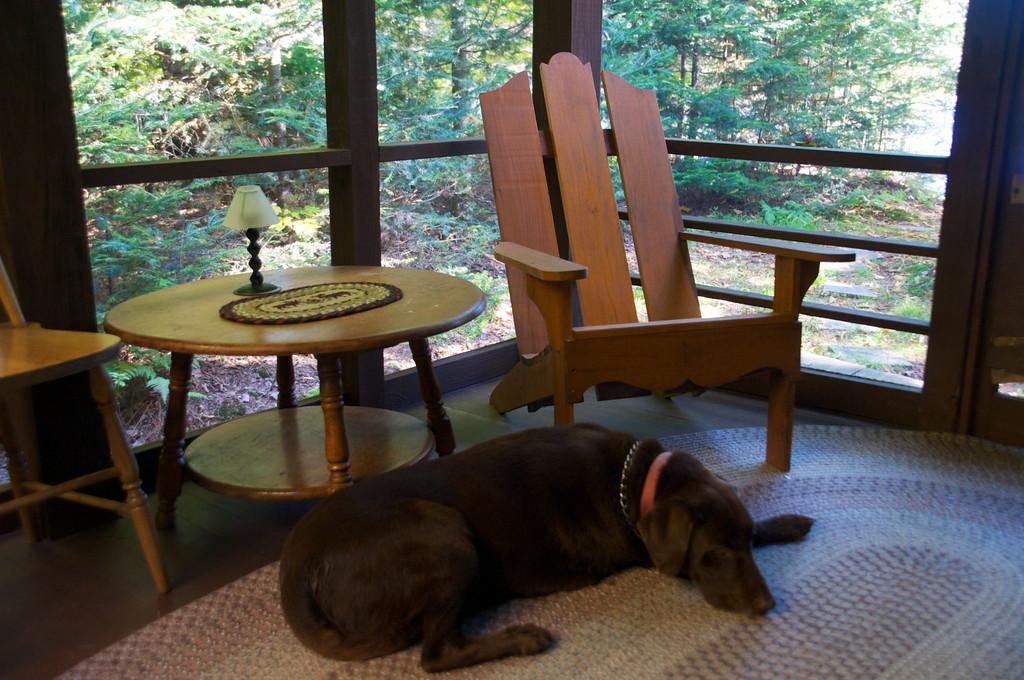 Little Nap on the Porch