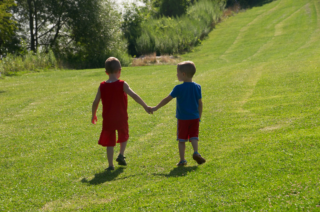 Brothers holding hands