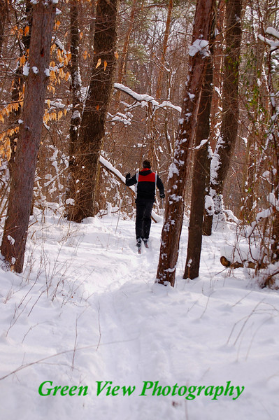 Cross Country skiing in Webster Park