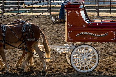 Washington State Clallam County Fair, August 2017