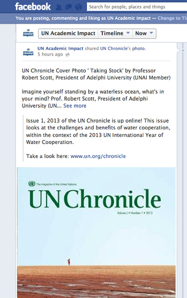 "UN Chronicle Cover ""Taking Stock"" (c) 2013 NOT FOR SALE"