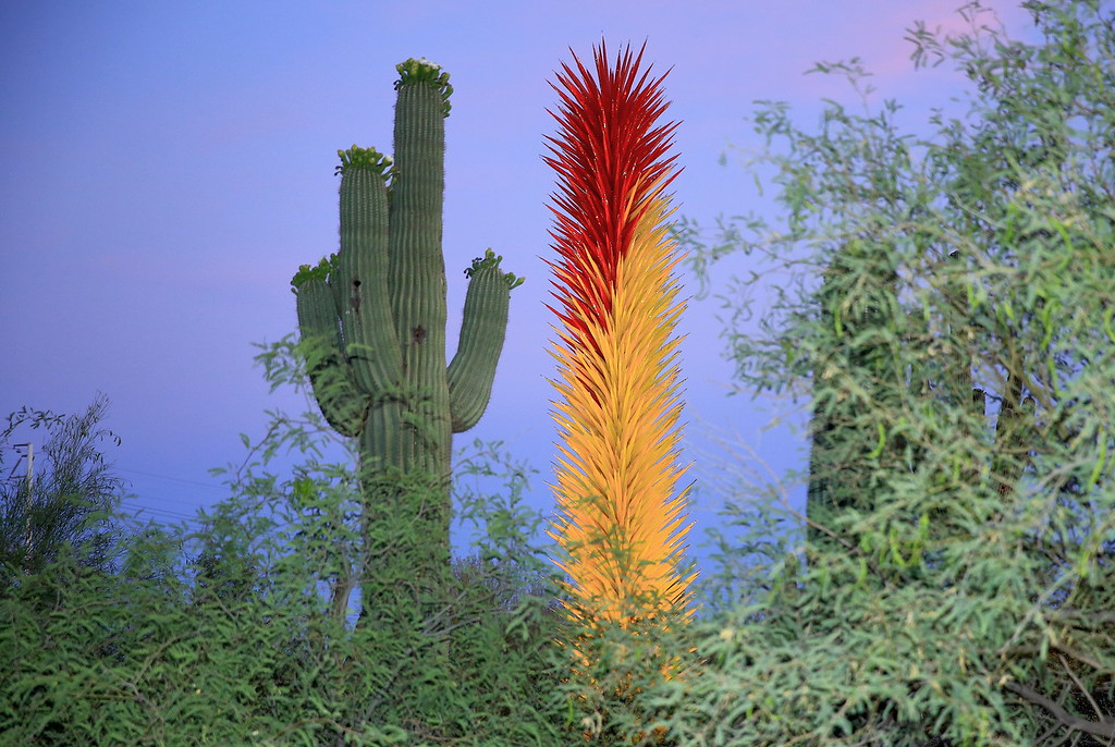 Chihuly Cactus Sculpture and Twin (C) 2014