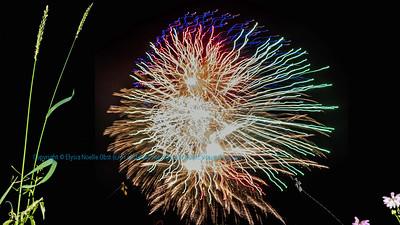 Obst Photos 2016 Nikon D810 White Lake Centennial 1916 to 2016 Celebration Fireworks 4066