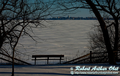 Cross country skier's and snowshoer's and ice fisherperson's view from the Woodland Trail within Governor Nelson State Park of oak trees and a frozen Lake Mendota and the state of Wisconsin capitol of Madison (USA WI Waunakee; Obst FAV Photos 2013 Nikon D800 HumanScapes Inspirational Image 7760)