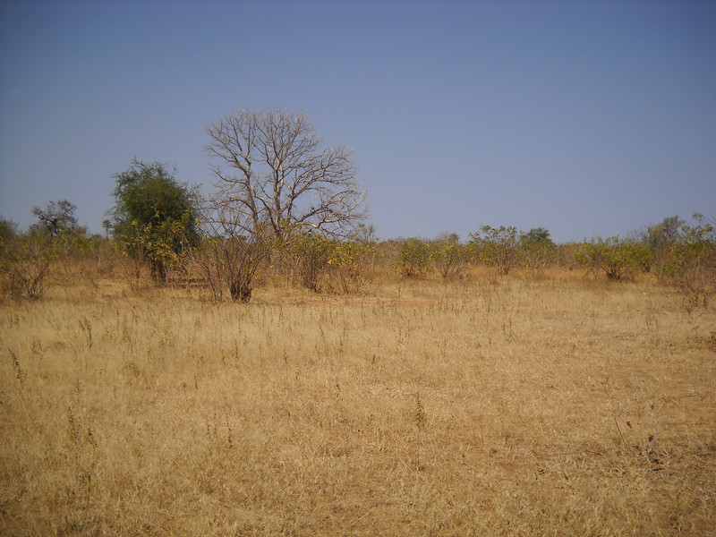 Rhum Athoi is about 90 minutes by car from Aweil, the capital town of Northern Bahr el Ghazal state in South Sudan.