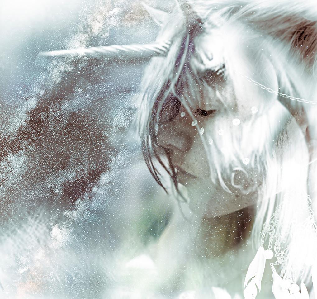 Spirit of the Unicorn