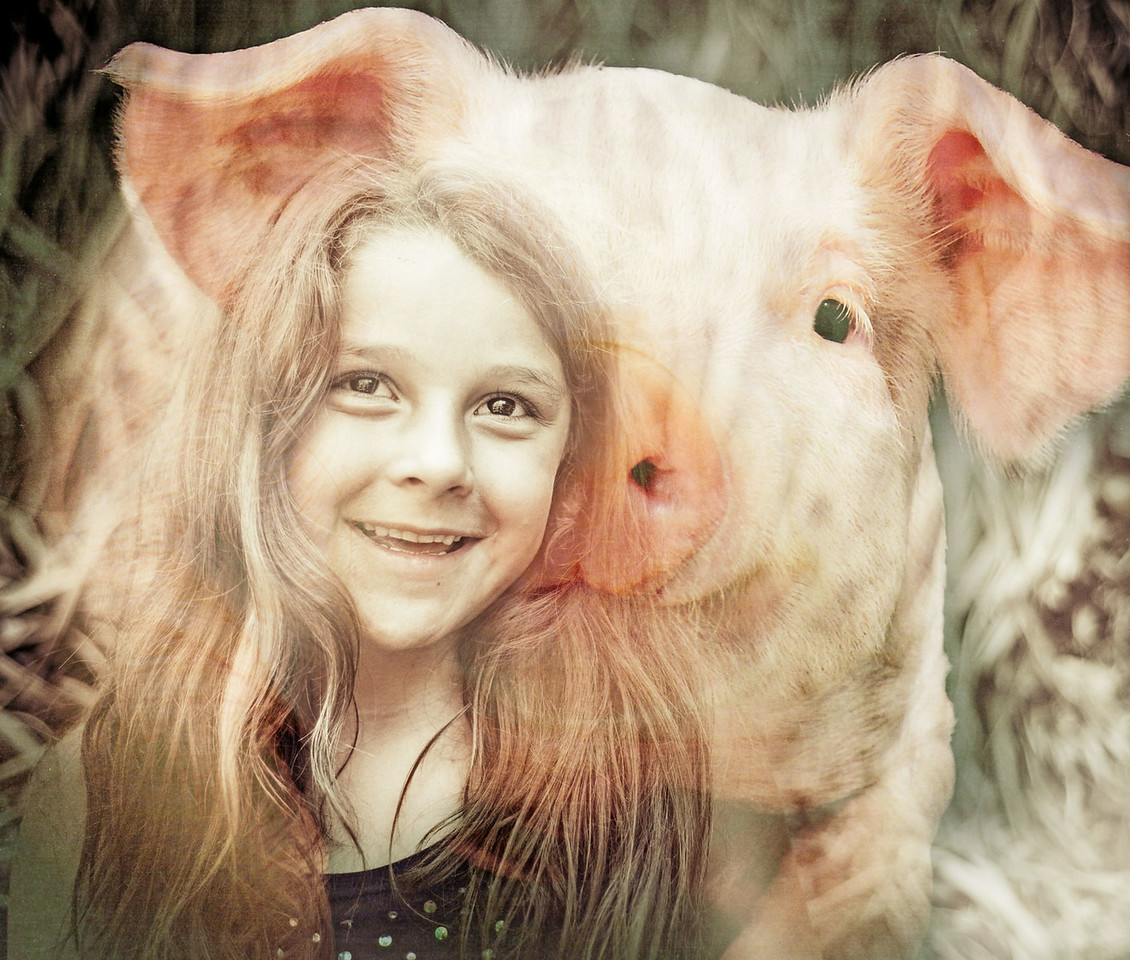 Spirit of the Pig