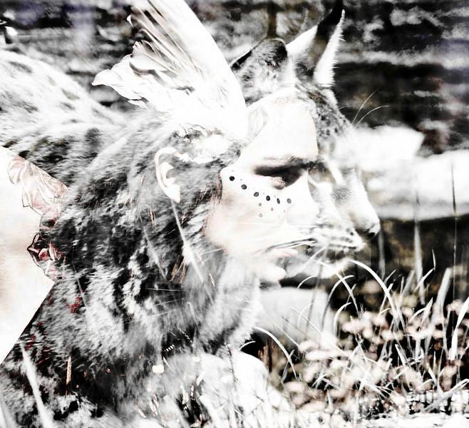 Spirit of the lynx