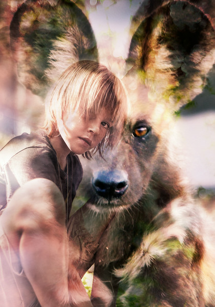 Spirit of the wild Dog